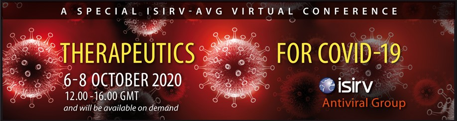 Banner for Virtual Conference